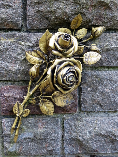 roses-873475_640